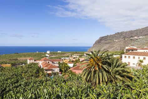 View from Tazacorte over Banana Plantations to the Sea, La Palma, Canary Islands, Spain, Europe Photographic Print