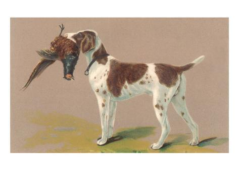 German Short-Haired Pointer with Pheasant Art Print