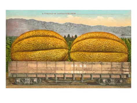 Giant Cantaloupe in Rail Car Taidevedos