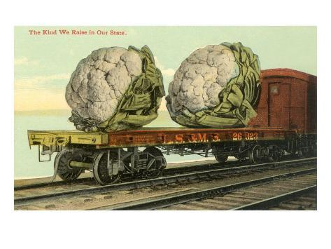 Giant Cauliflower on Flatbed Taidevedos
