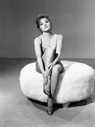 Gina Lollobrigida, c.1950s Photo