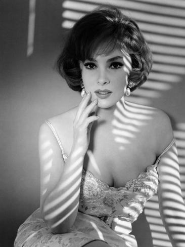 Gina Lollobrigida, Early 1960s Photo