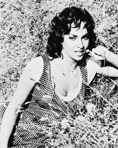 Gina Lollobrigida Photo