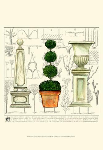Garden Topiary Art Print