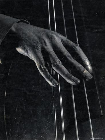 Hand of Bass Player on the Strings During Jam Session at Photographer Gjon Mili's Studio Photographic Print