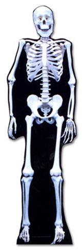Glow In The Dark Skeleton Lifesize Standup Cardboard Cutouts
