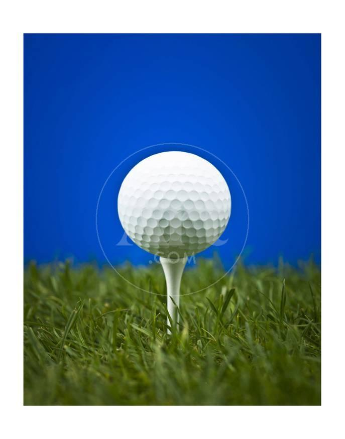 Golf Ball On Tee Blue Back Print Allposters Com