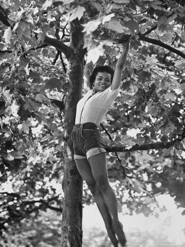 Eartha Kitt Playing in the Tree Premium Photographic Print