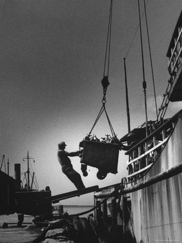 Fish being unloaded at docks photographic print by gordon for Docks fish menu