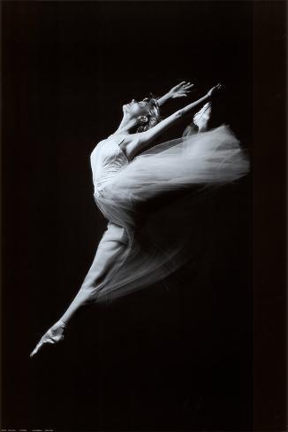 Grace in Motion Art Print