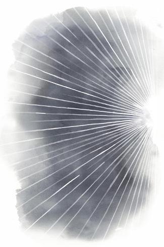 Rays I Art Print