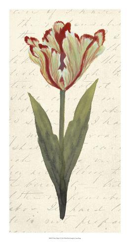 Twin Tulips I Giclee Print