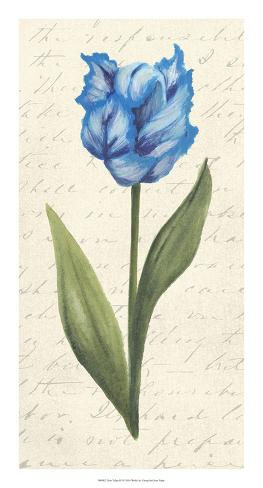 Twin Tulips IV Giclee Print