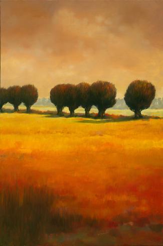 Pollard Willow II Stretched Canvas Print