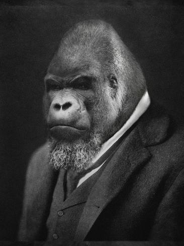 Mario Gorillini Art Print