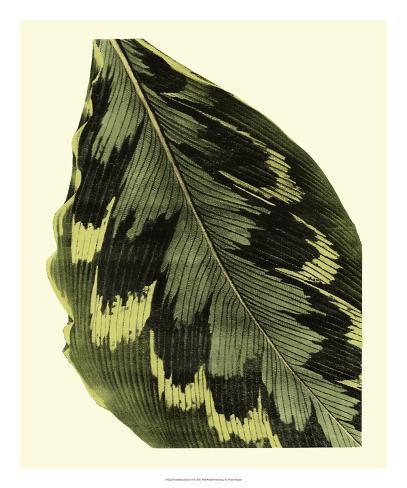 Grandiose Leaves I Giclee Print
