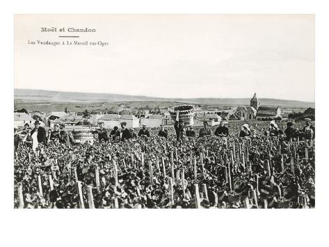 Grape Harvesters, France, Moet et Chandon Art Print