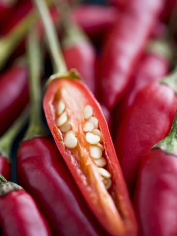 Red Thai Chillies Photographic Print