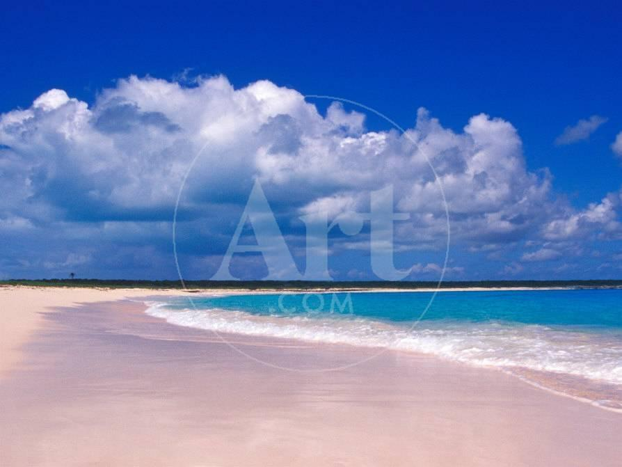 Pink Sand Beach Harbour Island Bahamas Photographic Print By Greg Johnston At Allposters