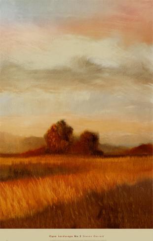 Open Landscape II Art Print