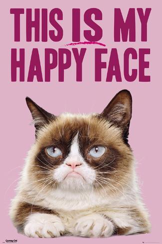 Grumpy Cat Happy Face Posters P 229 Allposters Se