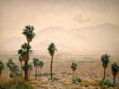 Palm Springs Desert Impressão artística