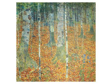 Birch Forest, c.1903 Premium Giclee Print