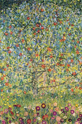 Macieira Giant Art Print