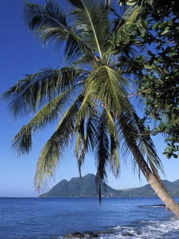 Morne Larcher, Baie De La Chery (Chery Bay), Martinique, West Indies, Caribbean, Central America Photographic Print