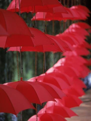 Umbrella Lights, Kunming, China Photographic Print