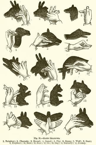 Hand Shadows Impressão giclée