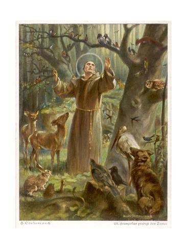 Saint Francis of Assisi, Preaching to the Animals Giclee Print