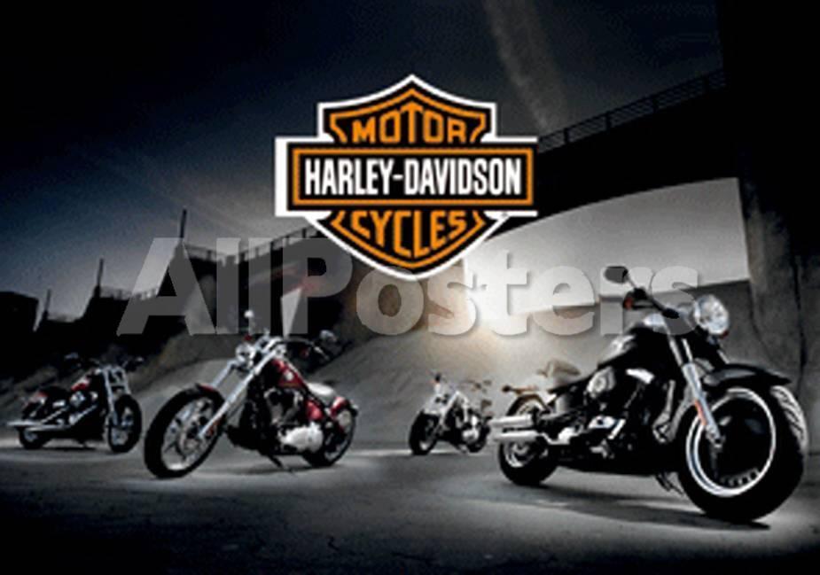 Harley Davidson - Bikes Pósters en AllPosters.es