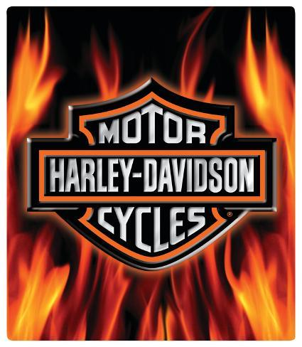 Harley Davidson Flame Logo Embossed Tin Sign Allposters Ca