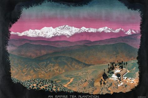 An Empire Tea Plantation, from the Series 'Drink Empire Grown Tea' Giclee Print