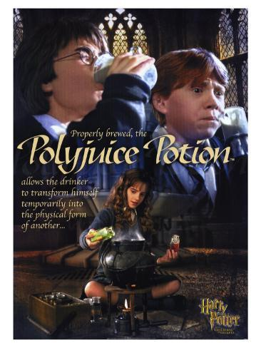 Harry Potter and the Chamber of Secrets, 2002 Stretched Canvas Print