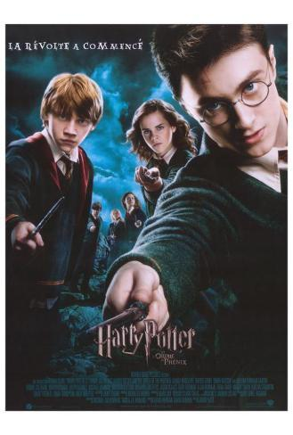 Harry Potter and the Order of the Phoenix - French Style Poster