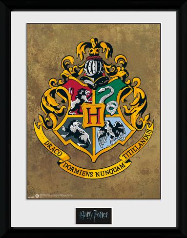Harry Potter Hogwarts Collector Print