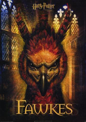 Harry Potter och hemligheternas kammare Masterprint