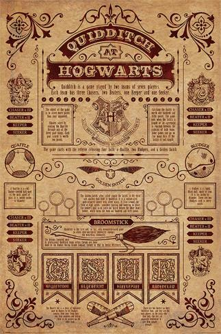 Harry Potter- Quidditch At Hogwarts Infographic Poster