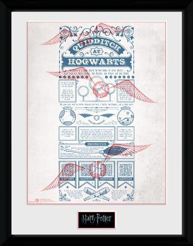 Harry Potter - Quidditch at Hogwarts Collector Print