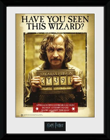 Harry Potter - Sirius Azkaban Lámina de coleccionista