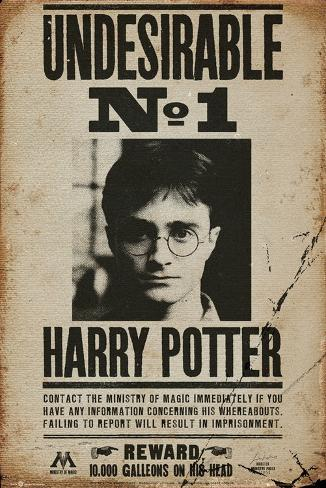Harry Potter - Undesirable No 1 Poster