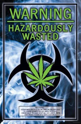 Hazardously Wasted Poster