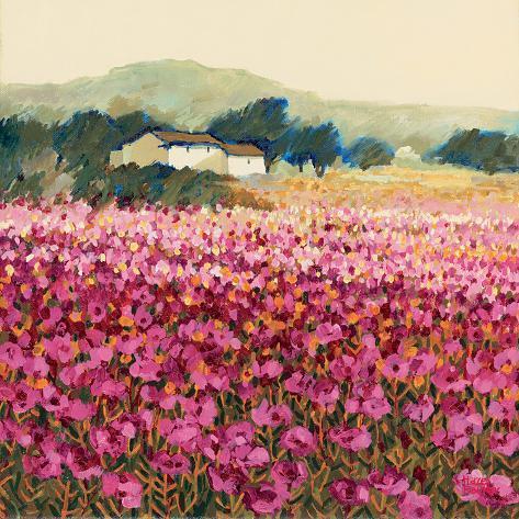 Le Jardin Rouge, Provence Impressão giclée premium