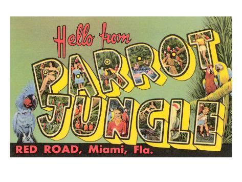 Hello from Parrot Jungle, Miami, Florida Art Print