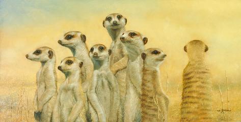Meerkats Giclee Print