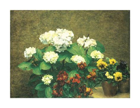 Hydrangea and Pansies Art Print