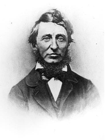 Henry Thoreau Lámina giclée