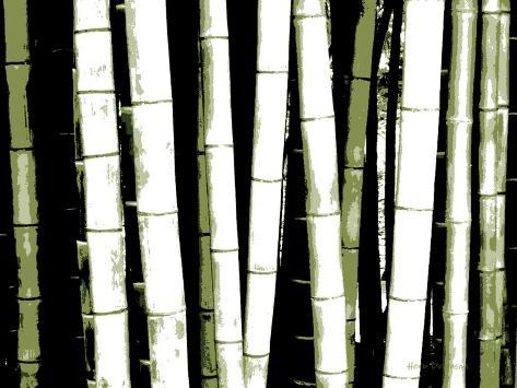 Enchanted Bamboo Green Photographic Print